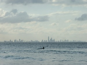 Surfer's Paradise Australia's Best Beaches