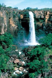 Rainforests of Australia in Kakadu National Park