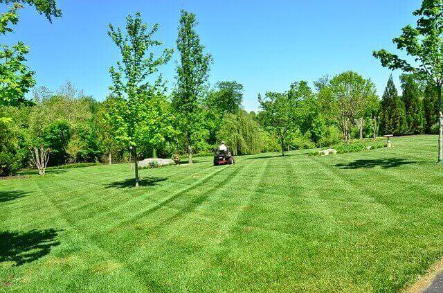 lawn care tips to prepare for winter.