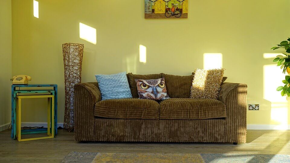 Sofas with Trendy Animal Print In A Home Decor