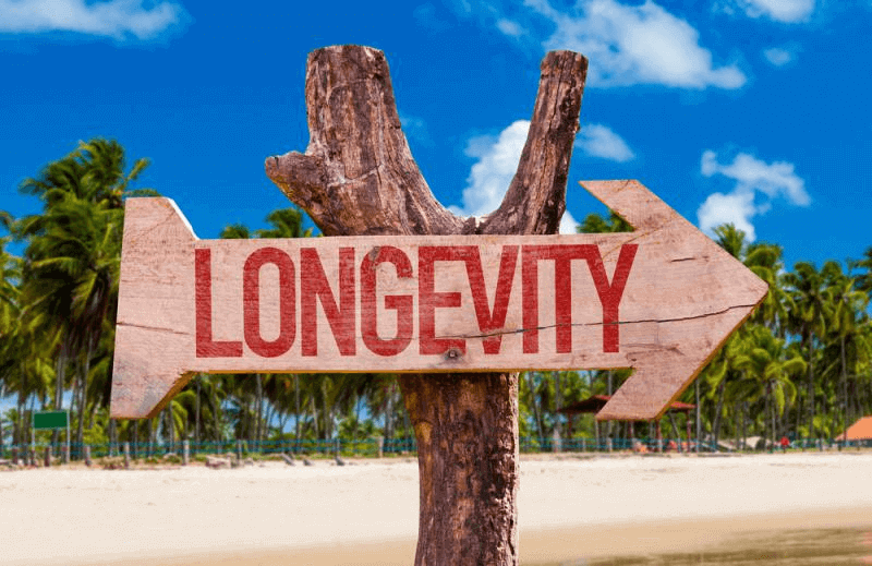 The longevity of your business is very important to be looked upon