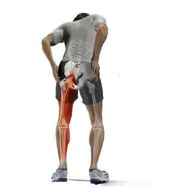 The top seven things that cause sciatic pain are listed