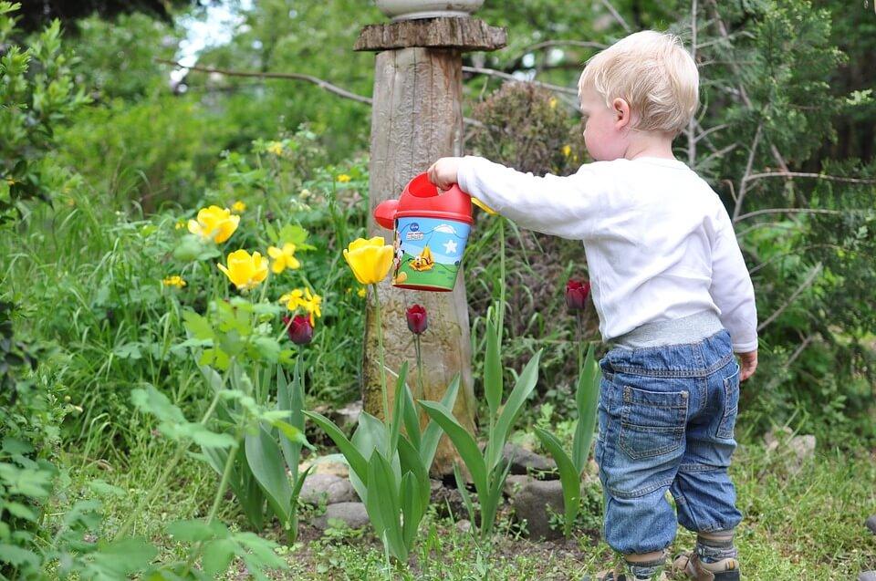 Toxins Free Garden for Your Children