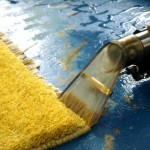 When utilizing a carpet cleaning device, make sure to utilize it in a single path just.