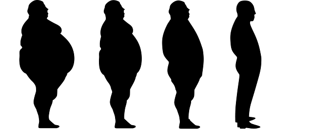 A healthy ultimate weight loss plan should be maintained that is trusted by anyone when dieting