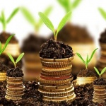 In terms of money investment, it is necessary to start investing in a non-speculative and solid portfolio
