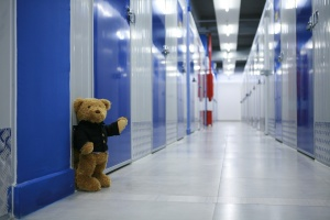 A teddy bear in climate-controlled storage.