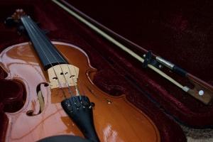 Violin in a hard case.