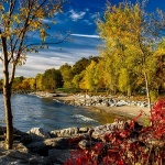 Autumn scenery by the water