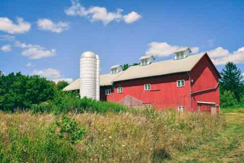 buying a farm in Virginia might look like a red farm with a white roof and grass around it.